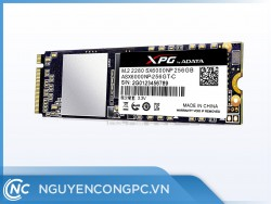 Ổ cứng SSD ADATA SX6000NP 256GB M.2