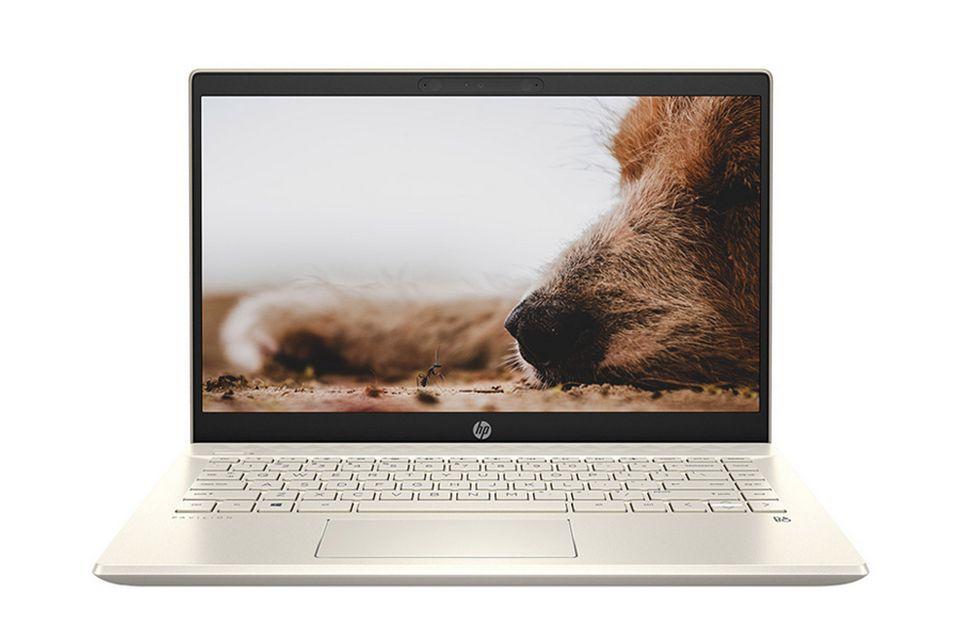 Laptop HP Pavilion 14-dv0013TU 2D7B8PA mang nét hiện đại