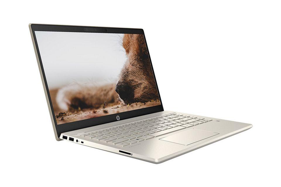 Laptop HP Pavilion 14-dv0013TU 2D7B8PA
