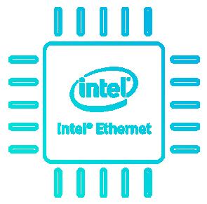 Intel ® 1 Gb Ethernet