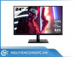Màn hình Acer EK241Y (23.8 inch/ FHD/ IPS/ 75Hz/ 4ms/ 250 nits/ HDMI+DSub)