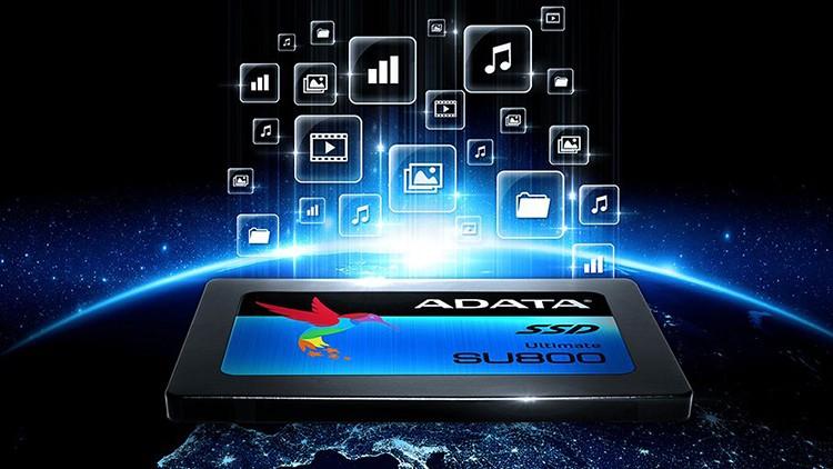 Ổ cứng SSD ADATA SU800